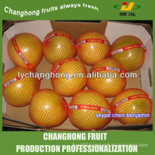 Chinese pomelo/excellent grapefruit