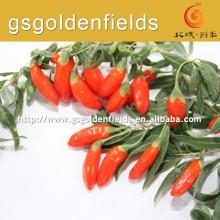 Nova safra 180/280/380 grãos por 50 gramas de gojiberry em alta qualidade