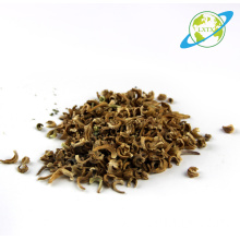 China for Flower Seeds Calendula officinalis seeds for planting export to St. Helena Manufacturers
