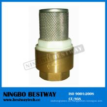 Válvula de retención de latón con filtro de acero inoxidable (BW-C09)