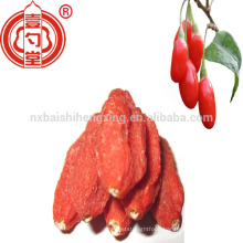 Barbary wolfberry fruitgoji berry shed dried organic for dropshipping