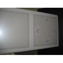 Heißer Transfer PVC Dekoration Panel (HT001)