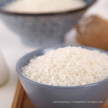 riz blanc rond à grains courts Koshihikari