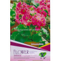 FL01 2018 new rose flower seeds different type of flower seeds for sale