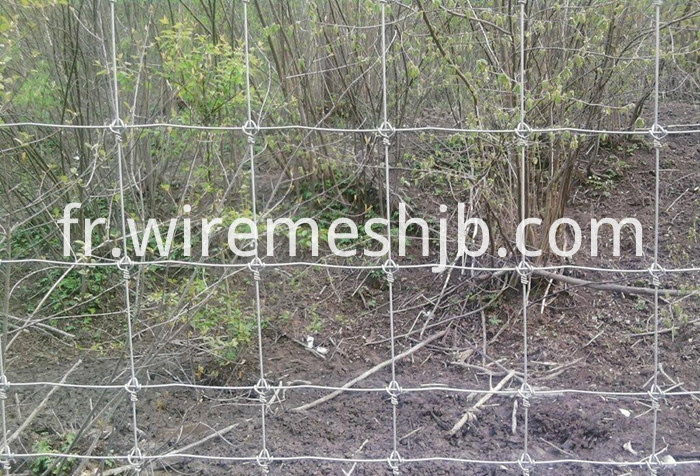 Farm Guard Field Fence
