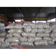 Hochwertiger Knoblauch aus China
