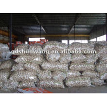 High quality garlic from china