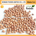 China Raw Peanuts For Sale