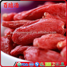 Goji berries 33133 goji berries 4 you goji berries 45