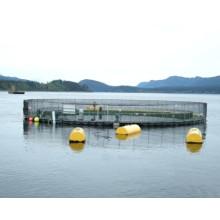 Fiberglass Self Floating Fish Tank