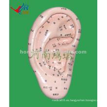 HR-514A masajeador de oído vívido modelo (17 cm), masajeador de oído de acupuntura