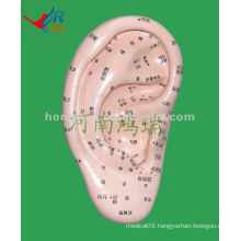 HR-514A vivid ear massager model(17 cm ),acupuncture ear massager