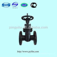 Válvula de compuerta de hierro fundido para el agua en la industria Z44T-10