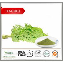 Bestes verkaufendes 100% natürliches organisches Moringa-Blatt-Auszug-Pulver im Großen