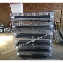Cage de cage de caille automatique nouveau design cage de caille de couche pour l'élevage de cailles (Whatsapp: +86 13331359638)