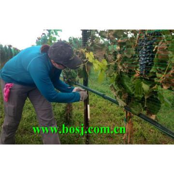 Weingut Traube Metall Stake Roll Formmaschine Brasilien