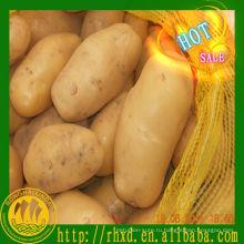 свежая картошка Голландии свежих покупатель картофеля