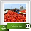 Полная линия по производству томатной пасты