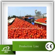 Equipamento Químico da Linha de Produção de Tomate