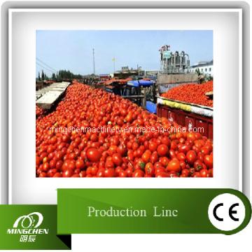 Linha completa de máquinas para processamento de pasta de tomate