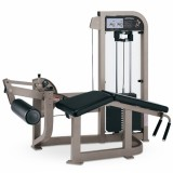 Fitness Equipment / Gym Equipment / Life Fitness /Leg Curl Ss16