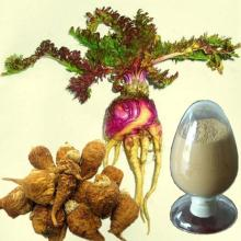 Anti Fatigue Natural Maca Root Extract