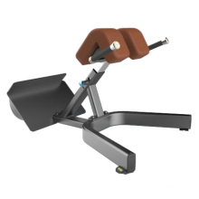 Commercial Fitness Equipment Back Extension