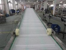 Food Grade Flex Belt Conveyor