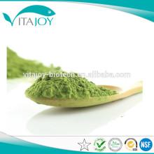 Polvo de clorofilina de cobre de sodio 100% natural de alta pureza / Clorofilina / Clorofilina Extracto de hoja de mora CAS: 11006-34-1