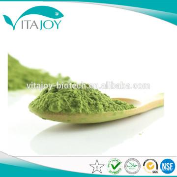 High Quality Moringa root PE 4: 1 en stock con entrega rápida