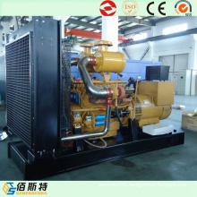 Shangchai 275kVA Diesel Generator Generating Set with Power Engine