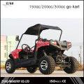 Racing Kart barato para la venta 200cc refrigerado por agua Zyao