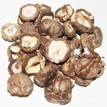 dry mushroom ---shiitake