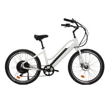 Newly American Design Hidden Battery Beach Cruiser Electric Bicycle