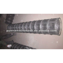 Black Iron wire welded wire mesh roll