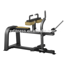 strength machine Seated Calf XP42