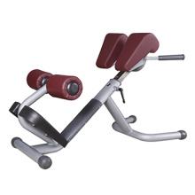 Römische Stuhl-kommerzielle Gymnastik-Ausrüstung