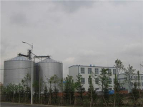 1,000 t/d Soybean, Rapeseed Oil Production Line