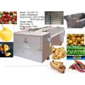 Bush Vegetable Washer Carrot Batata Radish Maçã Máquina de lavar vegetais