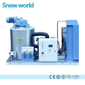 Snow world 1.2T usine de machines à glace en paillettes
