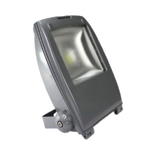 ES-30W LED Floodlights