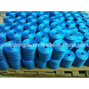 Hot Sale of PP Rope in Americal&Europen