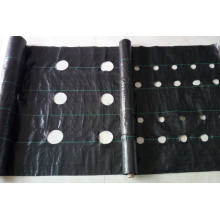 Non Woven Weed Fabric Matting