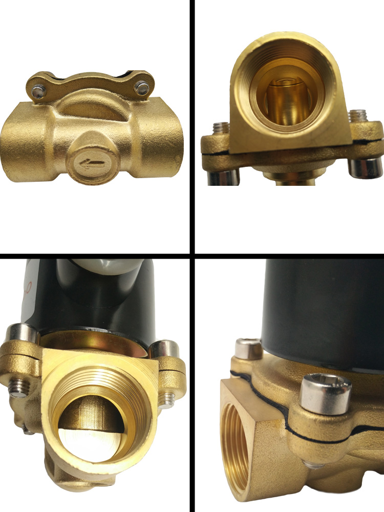 The Detail image of AC 220V Brass Body Solenoid Valve 2W200-20: