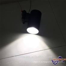 El más nuevo brigdelux de 20 vatios llevó la luz de la bóveda de la pared