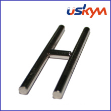 Special Shape NdFeB Magnet (S-001)