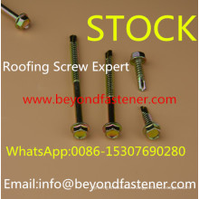 Roofing Screw Self Drilling Screw Bi-Metal Screw