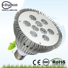 Garten führte Scheinwerferlicht 12w LED-Beleuchtung