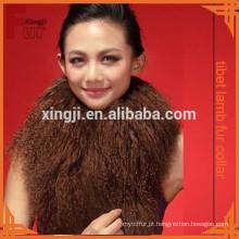 boa qualidade tingido cabelos longos mongol gola de pele de cordeiro para garemnt / jaqueta
