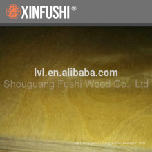 UV coated birch Plywood for russian market